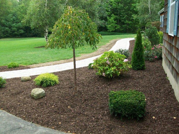 decorative-landscaping-stone