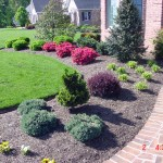 front-yard-landscaping-pictures