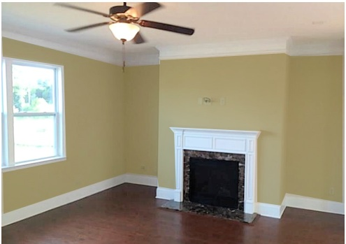 What Color To Paint Living Room - Kaisoca.Com