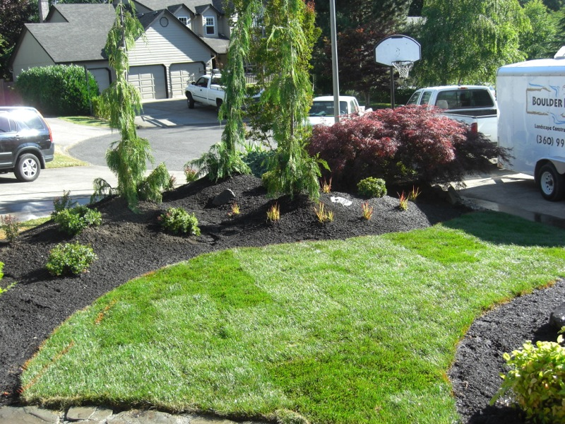 Alternatives to grass in backyard Photo - 3 | Design your home