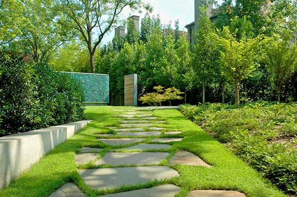 Backyard design landscaping