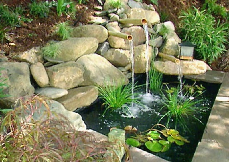 Backyard design pictures