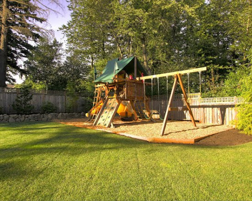Backyard Dog Playground backyard dog playground photo - 3 | design your home