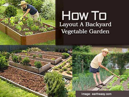 We Offer To Your Attention Backyard Garden Layout Photo U2013 7. If You Decide  To Decorate The House Or Yard And Do Not Know What To Do With It!
