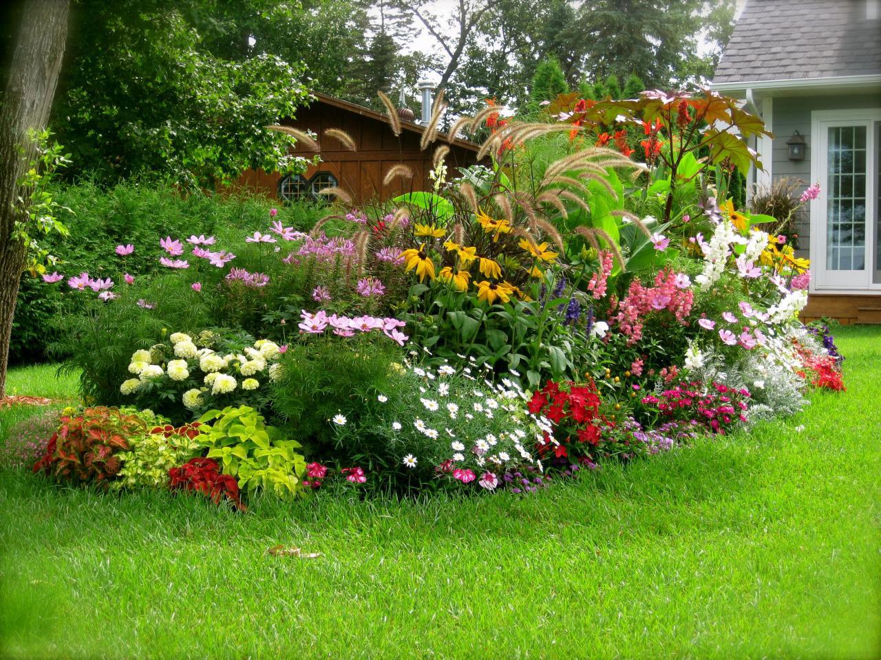Цветы для огорода дизайн
