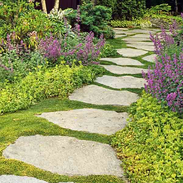 Yard Covering Ideas: Large And Beautiful Photos. Photo