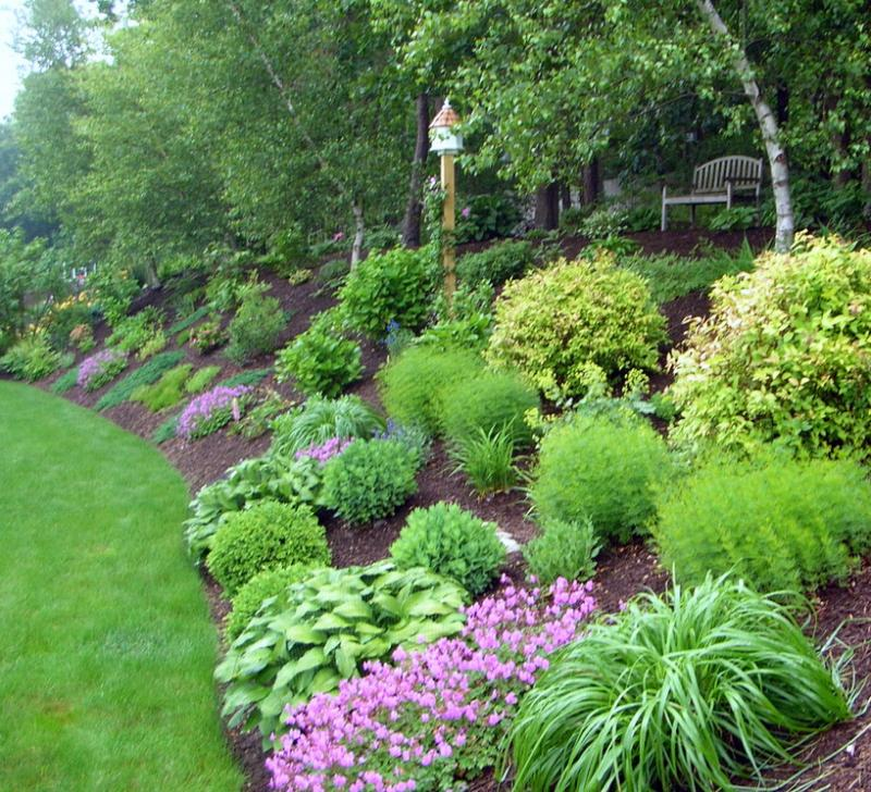 Backyard hill landscaping ideas