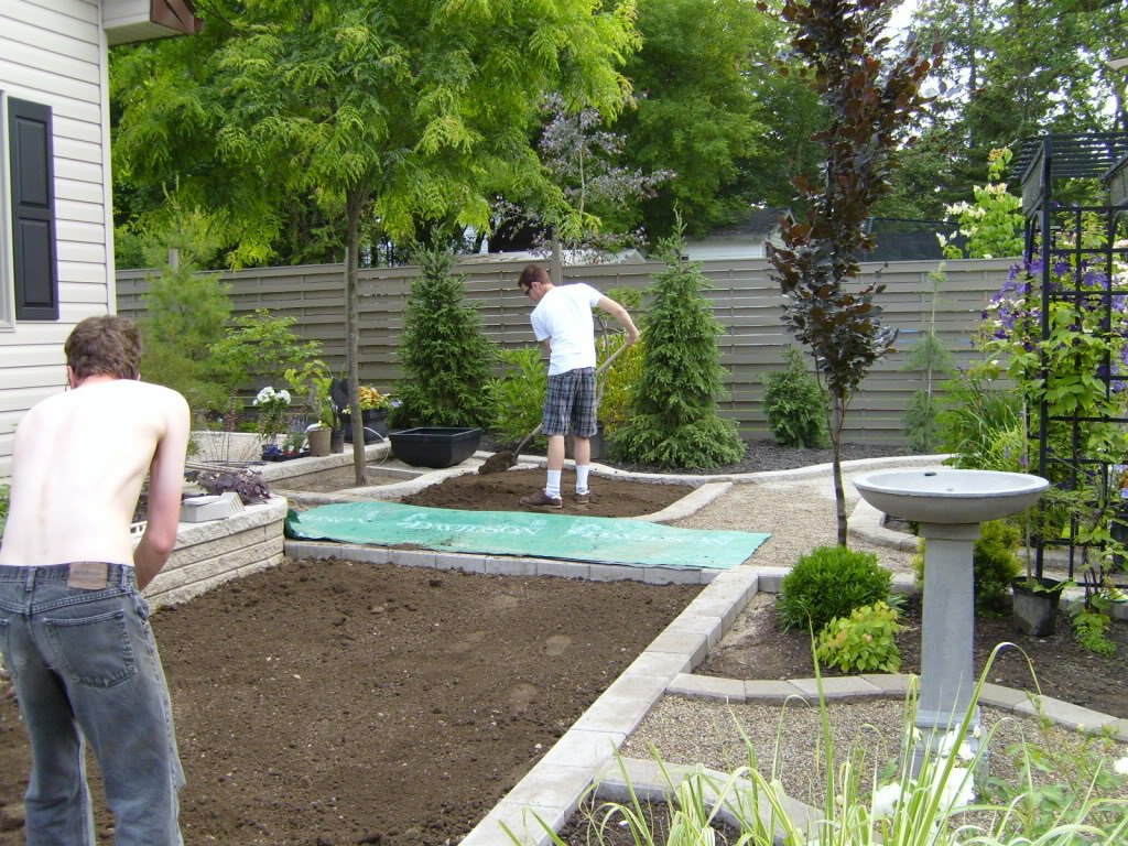 Backyard landscaping images