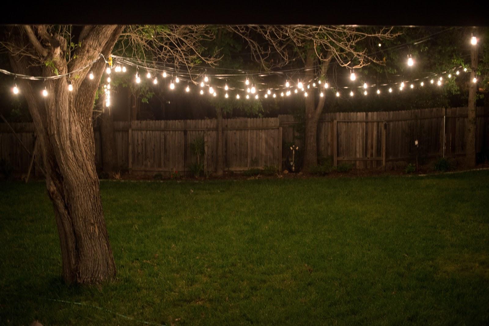 backyard outdoor lighting photo