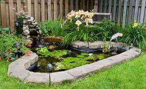 Backyard pond designs Photo 3 Design your home