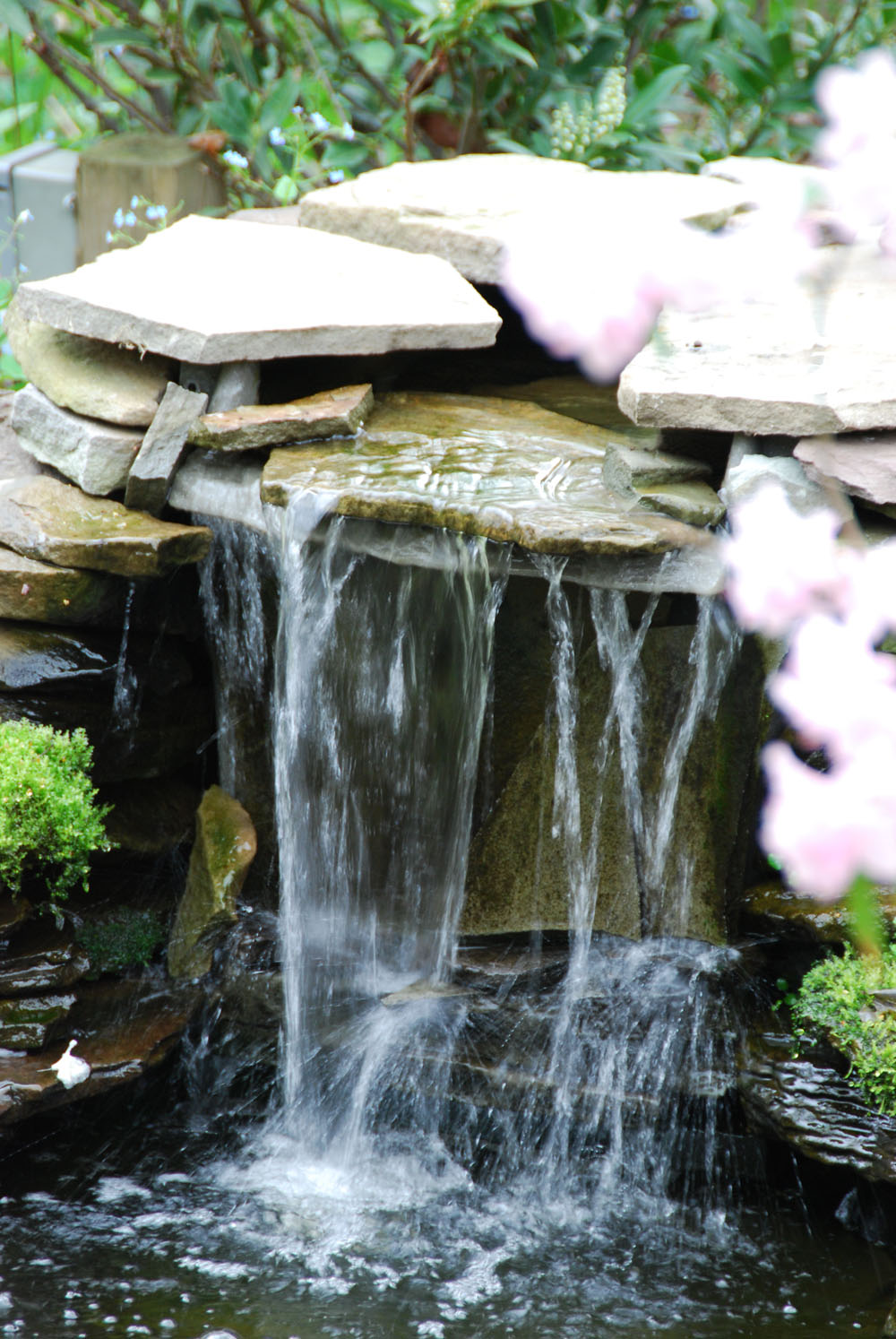 Backyard pond ideas with waterfall gallery of find this for Cheap backyard pond ideas