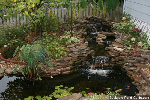 Backyard koi pond ideas large and beautiful photos for Large outdoor fish ponds