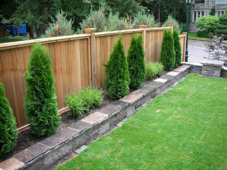 Backyard privacy fences Photo - 1