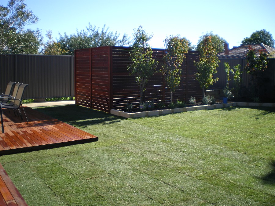 Privacy In Backyard Part - 31: Backyard Privacy Landscaping Photo - 4