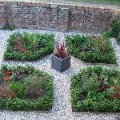 How to create an herb garden Photo - 1