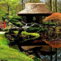 How to design a japanese garden Photo - 1
