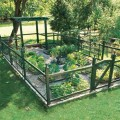 How to grow an herb garden outside Photo - 1