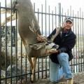 How To Keep Deer Away From Garden ...