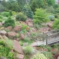 How to make a small rock garden Photo - 1