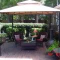Canopy backyard Photo - 1