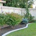Cheap backyard Photo - 1