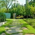 Cheap ideas for backyard Photo - 1