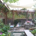 Creating privacy in your backyard Photo - 1