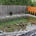 Diy backyard landscaping Photo - 1
