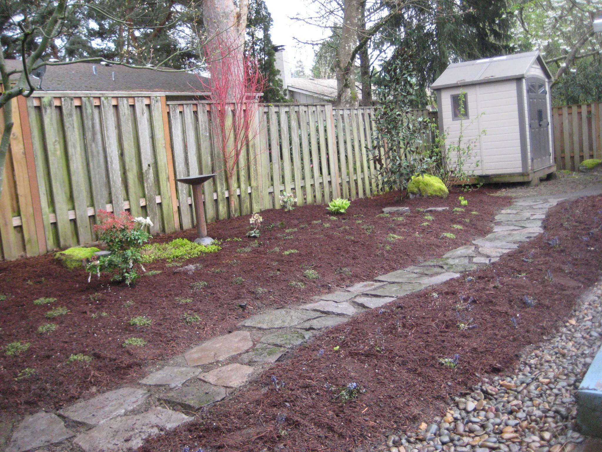 Dog friendly backyard - large and beautiful photos. Photo ...