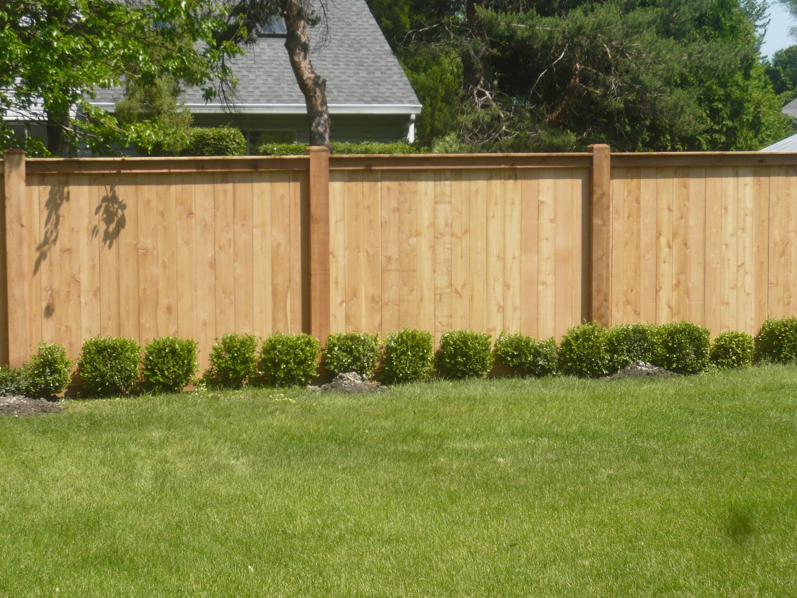 Fence ideas for backyard - large and beautiful photos ...