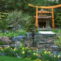 Japanese garden backyard Photo - 1