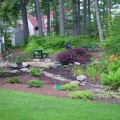Landscape backyard Photo - 1