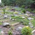 Rock backyard Photo - 1