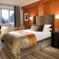 Color ideas for bedrooms Photo - 1