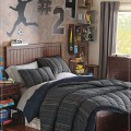 Teenage guy bedroom ideas Photo - 1