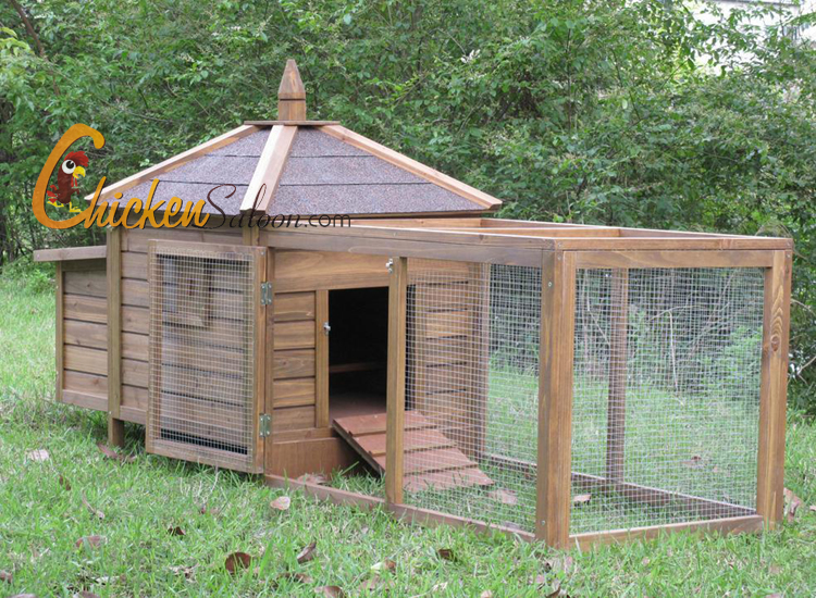 Backyard chicken coop large and beautiful photos photo for Backyard chicken coop plans