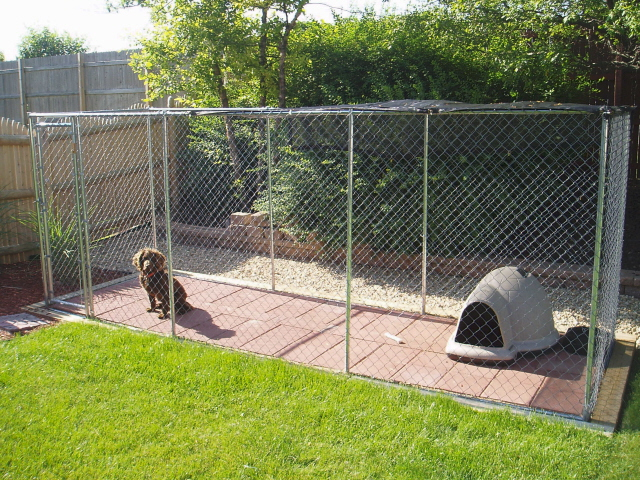 Backyard Dog Run Large And Beautiful Photos Photo To