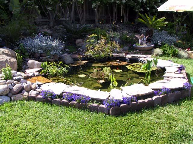 backyard fountains and ponds photo - 1