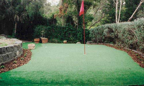 backyard golf photo - 1