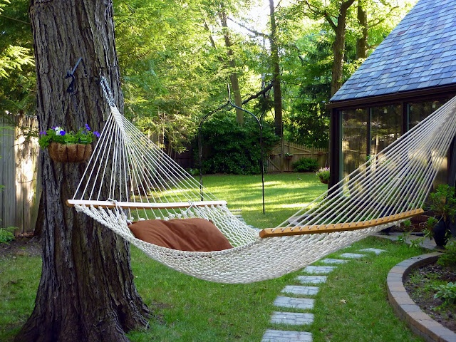 backyard hammock photo - 1