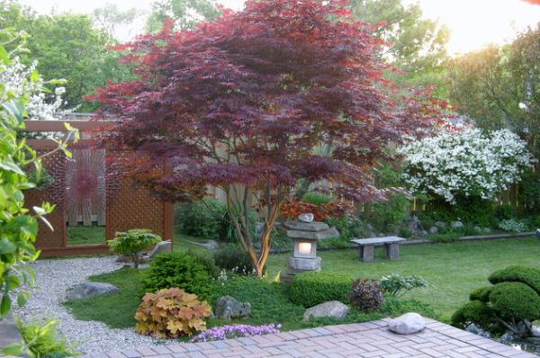 backyard japanese garden photo - 1