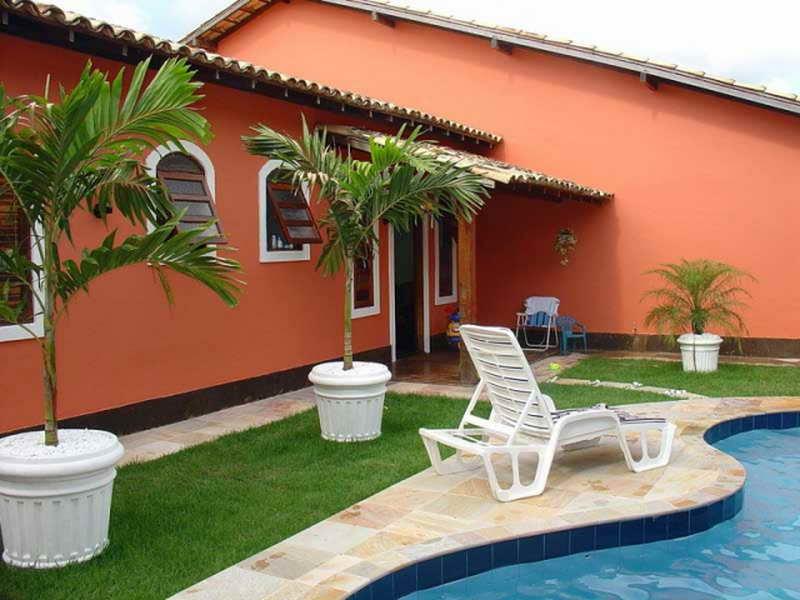 Ordinaire Backyard Palm Trees