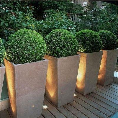 backyard planters photo - 2