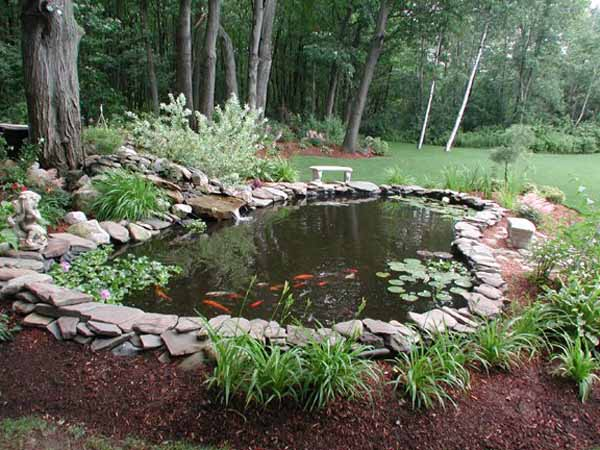 backyard pond designs photo - 1
