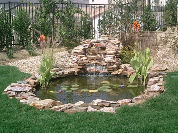 backyard ponds ideas photo - 1