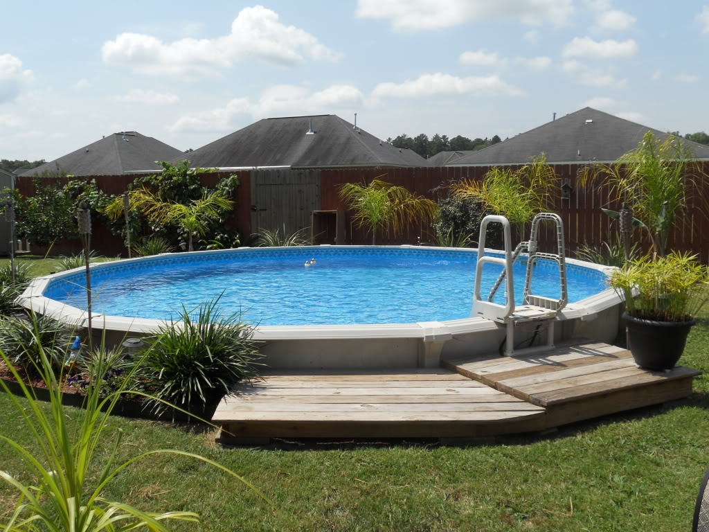 backyard pool landscaping photo - 1