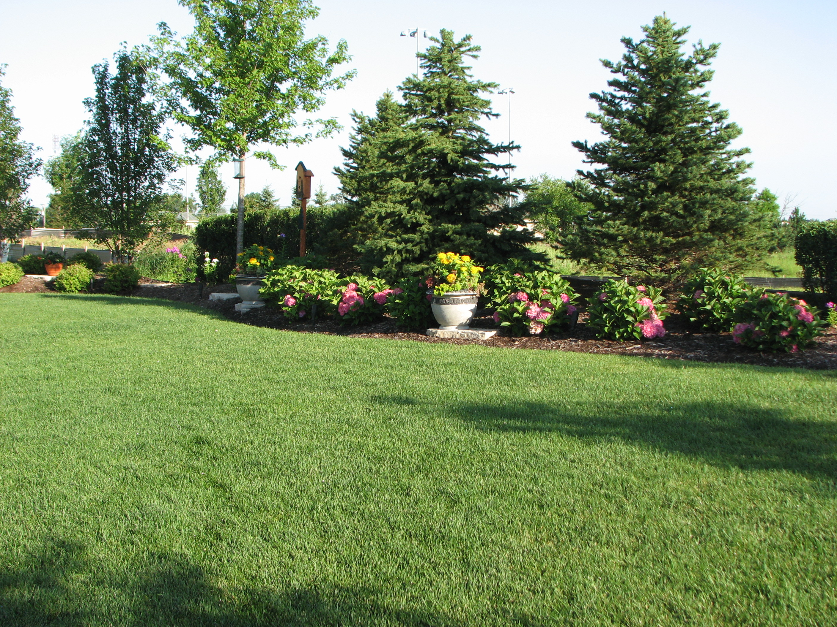 Backyard privacy landscaping ideas large and beautiful for Corner lot landscaping pictures