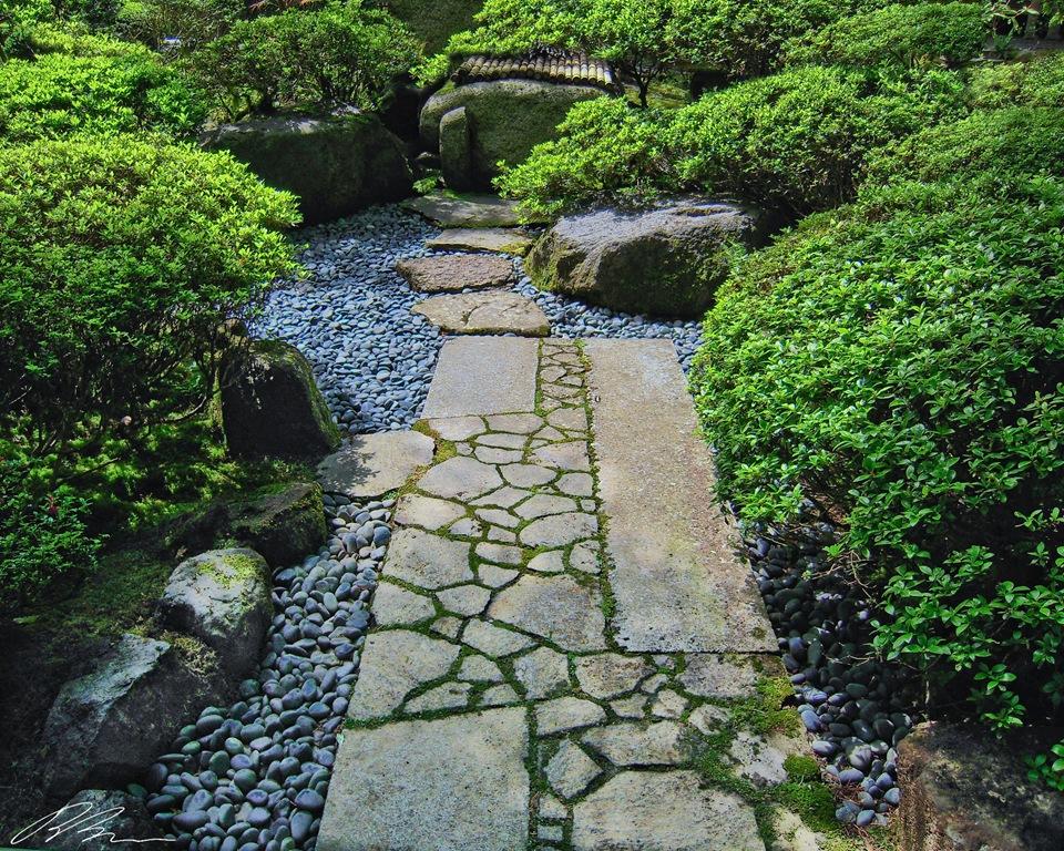 backyard walkways photo - 1