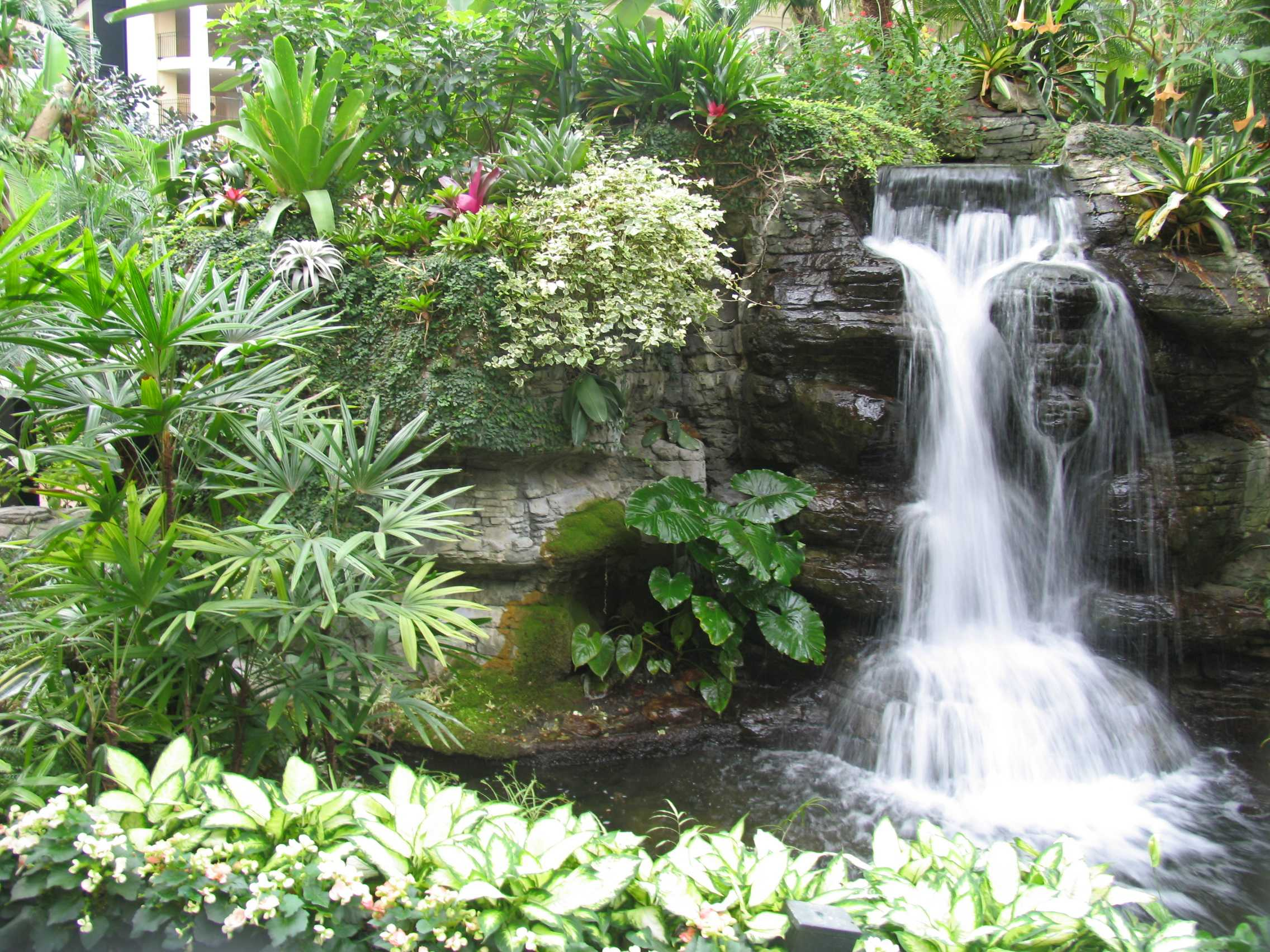 backyard waterfall ideas photo - 2