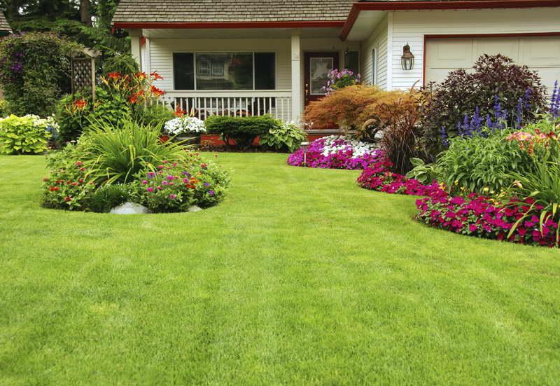 Beautiful Backyards beautiful backyards on a budget - large and beautiful photos